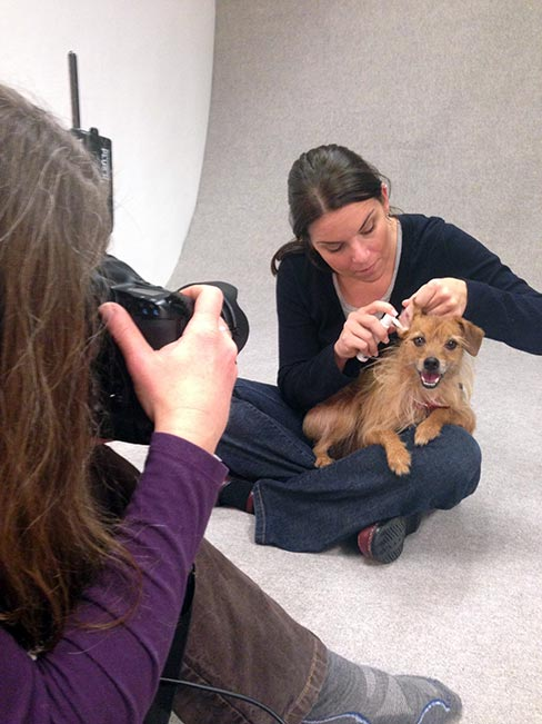 Animal actor Super as a model patient for Virbac ear drops